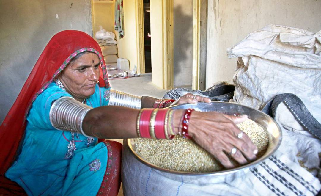 Pearl millet helps fight iron deficiency Evidence from three bioavailability studies