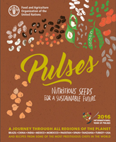 Power of the pulse: Top chefs share secrets of bean cuisine in colorful new book