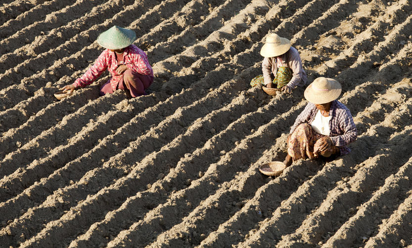 John Hoffmire: Climate change and sustainable farming – one way to address world hunger