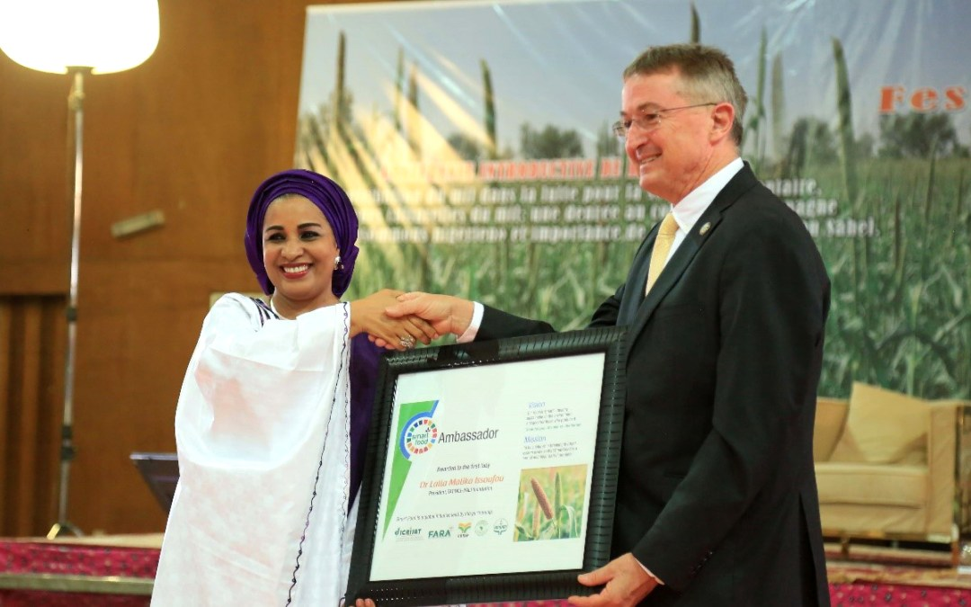 Niger government takes higher stand on pearl millet