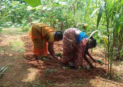 52-YO TN Woman's Revolution Gives Women Farmers Millets to Battle Climate Change!