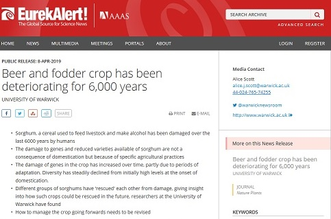 Beer and fodder crop has been deteriorating for 6,000 years