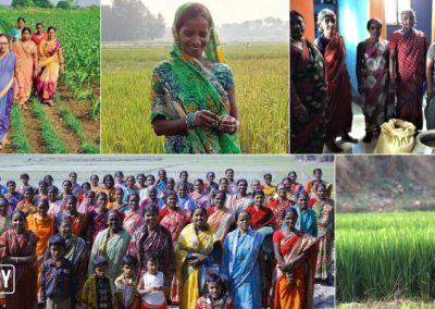 These women are championing the fight against climate change in India with timely innovations