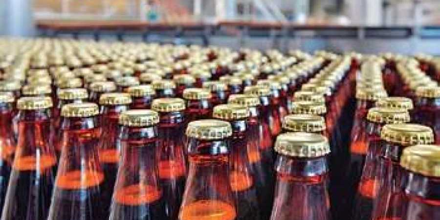Jowar beer all set to shake the market?