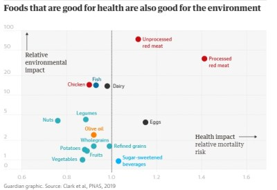 Healthy diet means a healthy planet, study shows