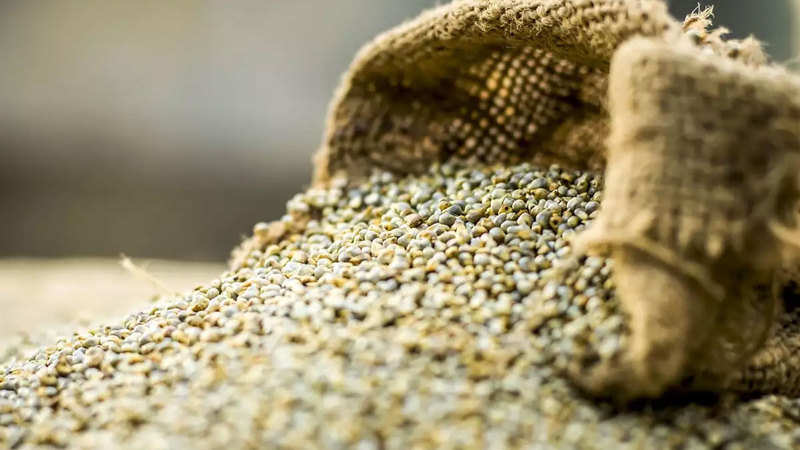 Bajra prices rise on export demand, local consumption Read more at: