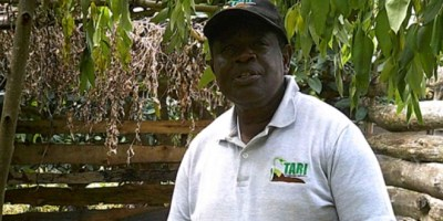 Tanzania Agriculture Research Institute completes Research for revival of finger millet crop