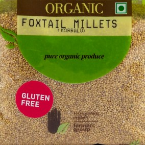 Foxtail Millet by Terra Greens