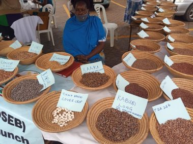 Upscaling Climate Smart and Nutrition Sensitive Beans and Finger Millet in Uganda