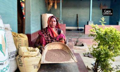 Millet magic: Kodo and Kutki calling in Chhattisgarh