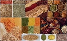 Immunity boosting millets