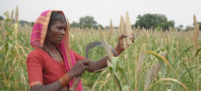 Millets prove tasty solution to climate and food security challenges