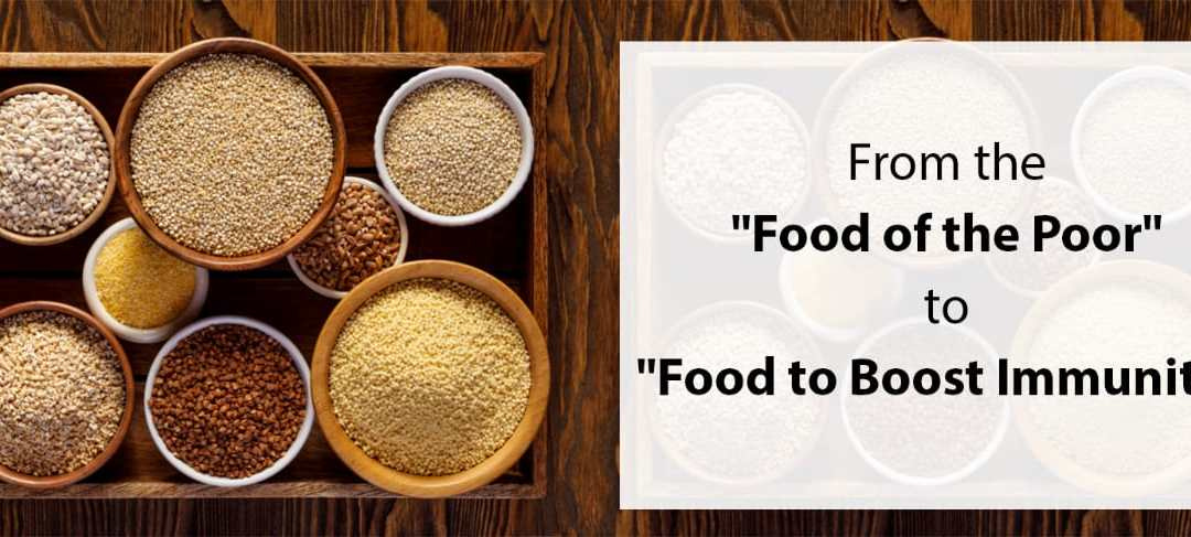 """Millets: From the """"Food of the Poor"""" to """"Food to Boost Immunity"""""""