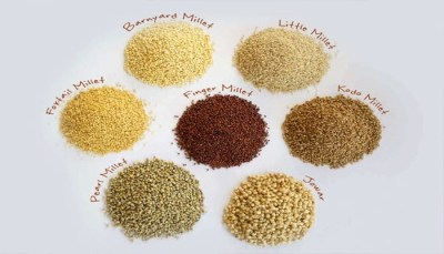 India begins exports of organic millets grown in Himalayas to Denmark