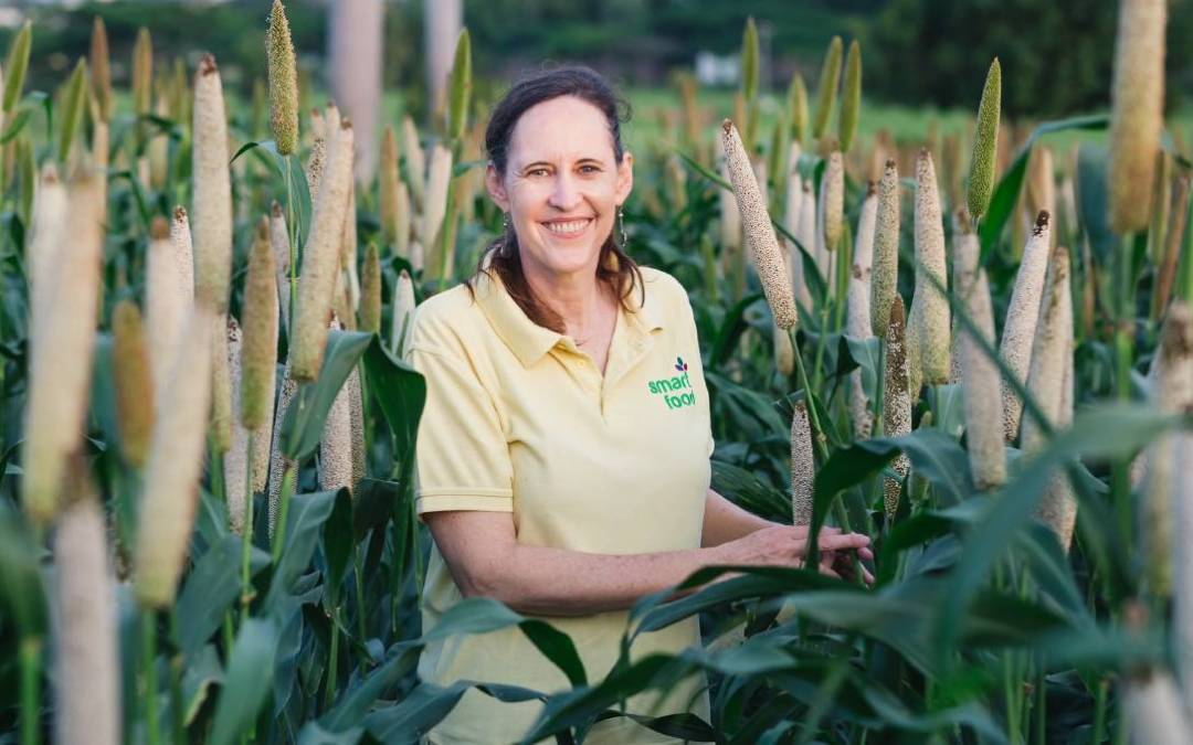 Millet and sorghum represent opportunities for farmers and consumers