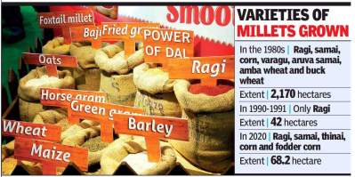 Millets have a field day again in the Nilgiris