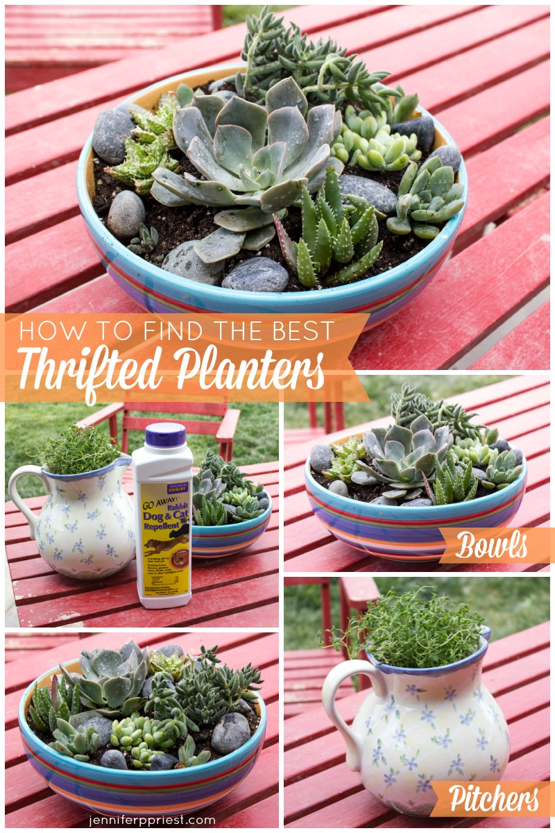 How to turn thrift shop finds into herb planters and succulent gardens - tips and tricks from Jennifer Priest.