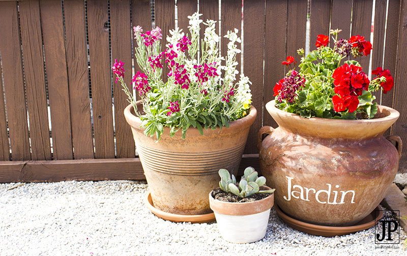 Patio Flowers in Stenciled Terra Cotta Pots JPriest