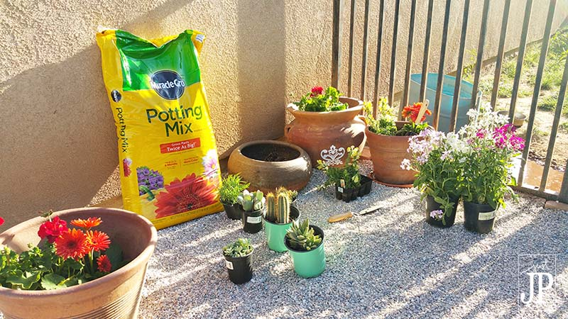 Potting plants with Miracle-Gro Potting Soils