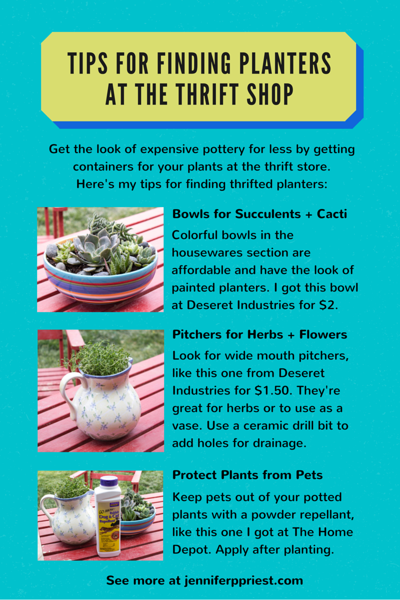How to find planters at the thrift shop - make herb gardens and succulent bowls to give as gifts.
