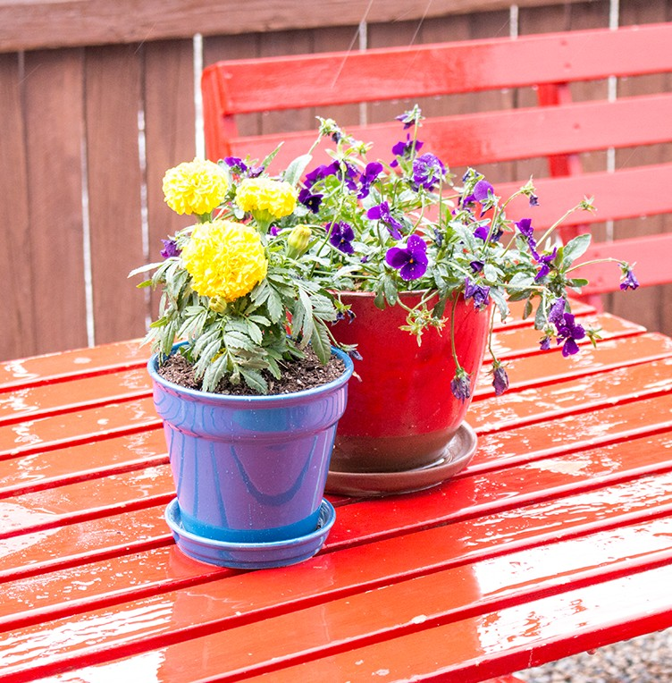 Flower-Pots-Lined-with-Felt-to-prevent-dirt-from-falling-out-and-allow-drainage