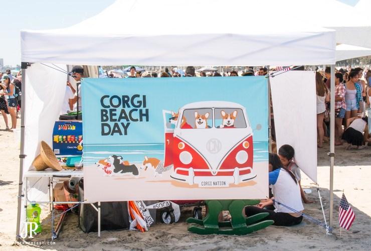 So Cal Corgi Beach Day – Saturdays in SoCal