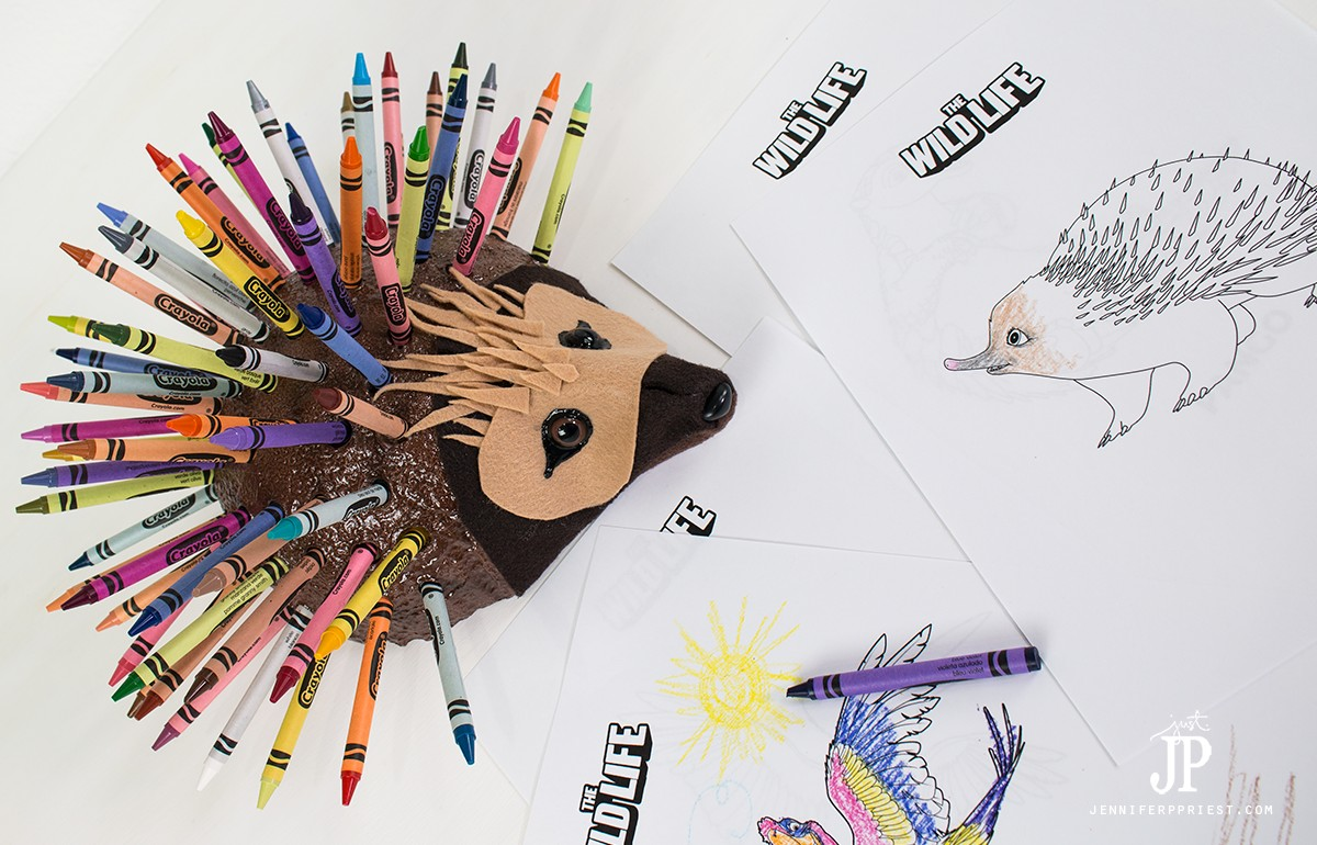 Epi-Echidna-The-WILD-LIFE-Movie-DIY-Crayon-Holder-jenniferppriest
