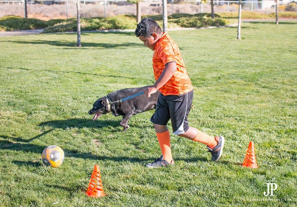 run-sprints-with-your-dog-playing-soccer-jenniferppriest