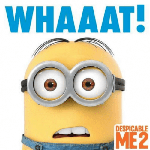 minion character saying what
