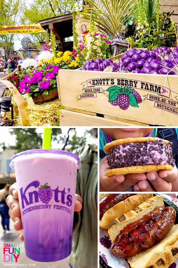 Boysenberry Festival Collage