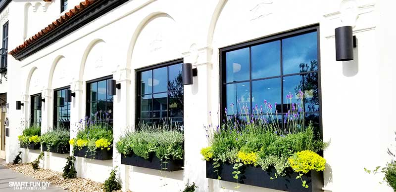 Multiple Flower Boxes and windows at Magnolia Table restaurant