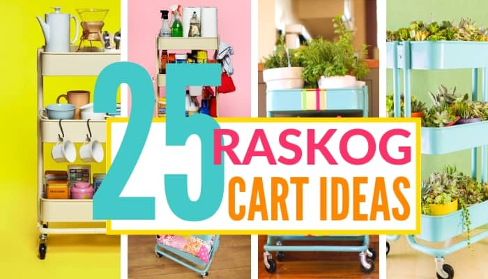 35 raskog cart ideas