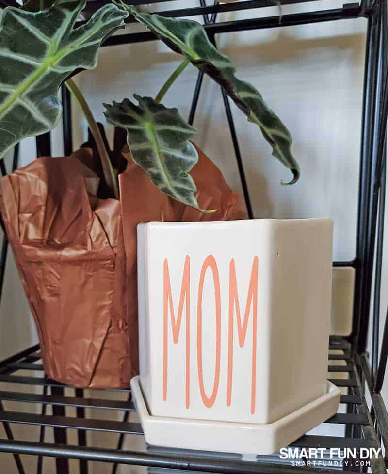 Personalized white plant pot with peach color vinyl lettering made using Cricut Joy on a shelf next to a houseplant