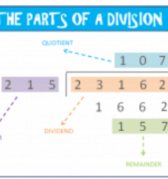Learn how to Divide with 3-Digit Numbers - Elementary Math [ 900 x 1200 Pixel ]