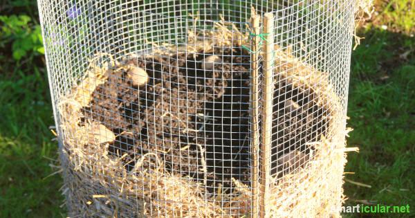 Kartoffelturm selber bauen  Anleitung fr Aufbau Pflege