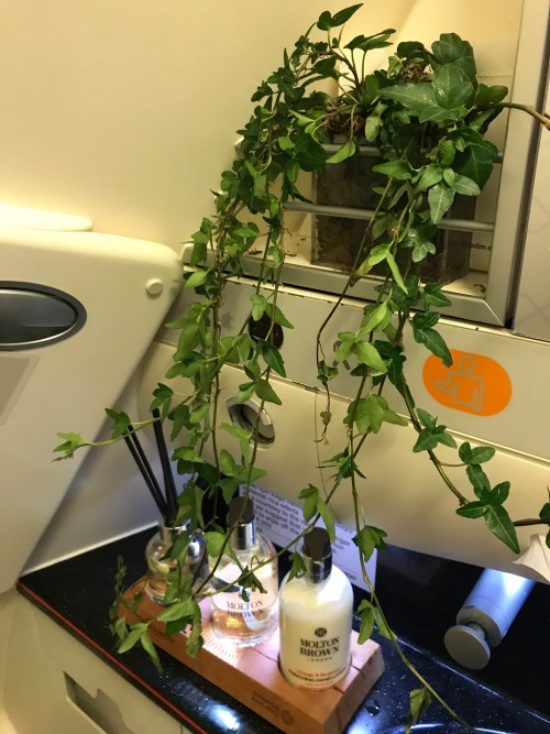 Turkish Airlines, Business Class Bathroom