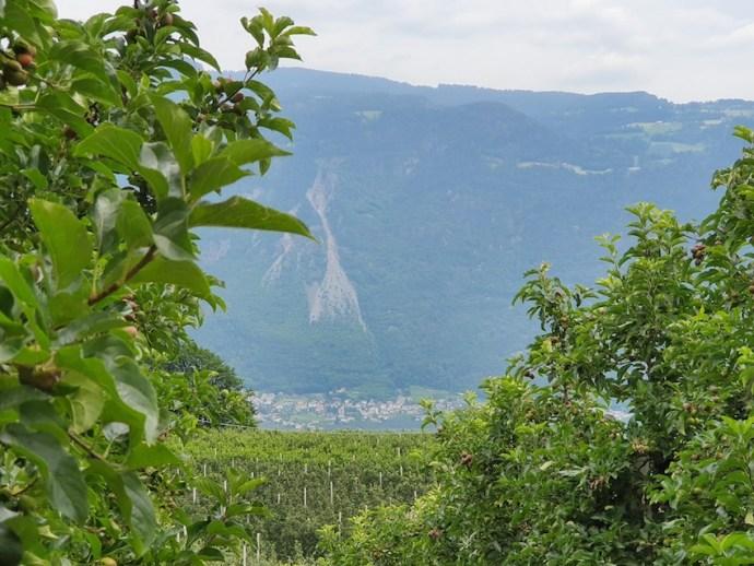 Aussicht vom Götzfried Keller ins Tal (Foto: SmartPhoneFan.de)