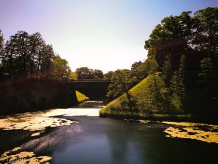 初夏の二重橋