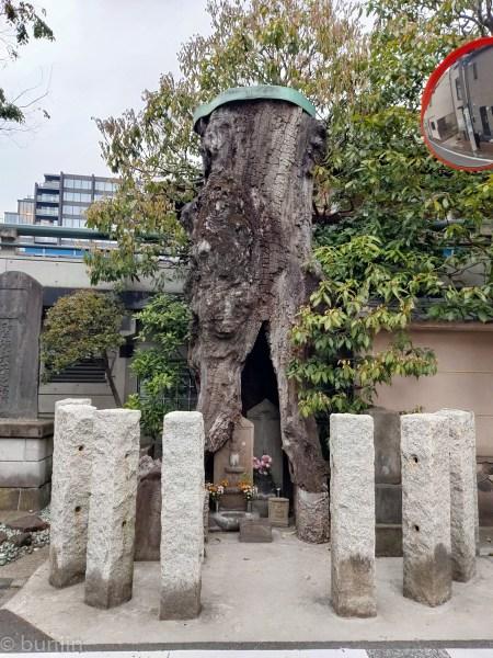 Japanese stonehenge???