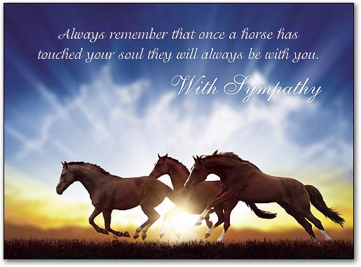 Condolences Loss Horse Quotes