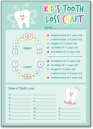 Kid S Tooth Loss Chart Smartpractice Dental