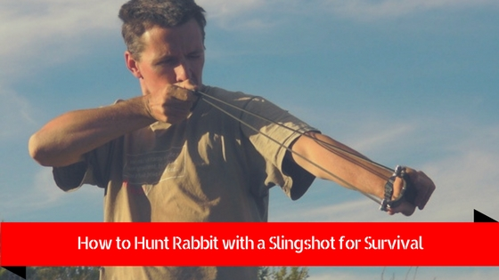 how to hunt rabbit with a slingshot