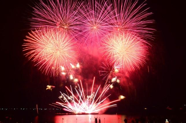 SM Art Pyrotechnics - PIPS 2012 Dispay (40)