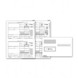 Laser 1099 Misc. Magnetic Media with Envelopes