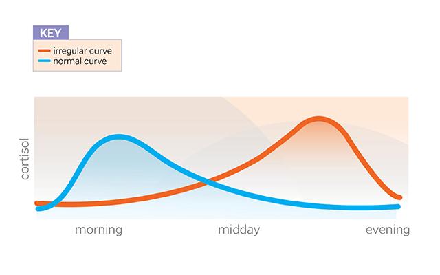 En azul una producción normal de cortisol, y en rojo una producción irregular a lo largo del día.