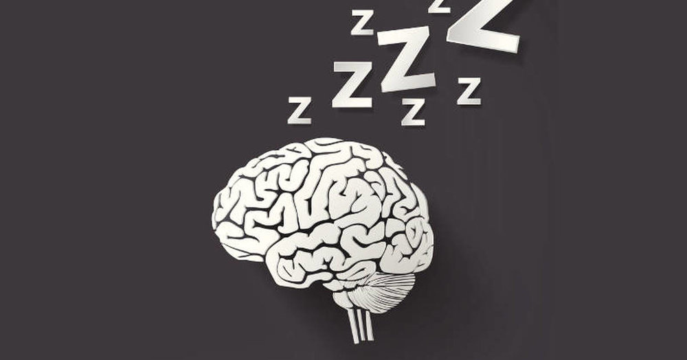 napping-brain