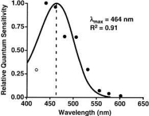 Sensibilidad a la inhibición de melatonina según la longitud de onda de la luz.