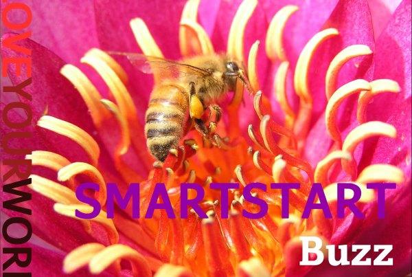 image - SMARTSTART Buzz