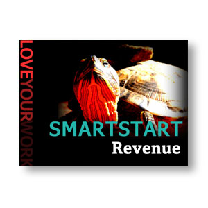 SMARTSTART Revenue