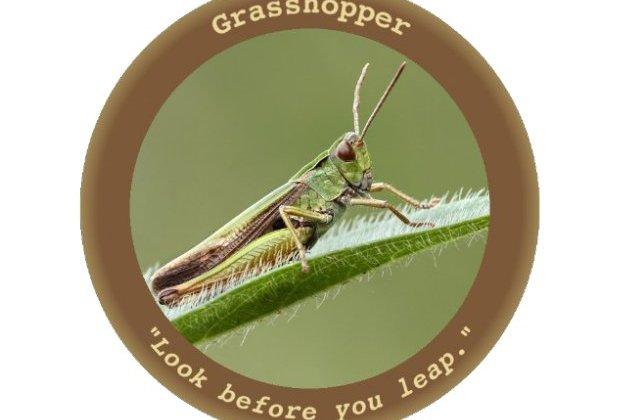 WikiLeaks reveals Grasshopper Malware, the CIA's Windows hacking tool